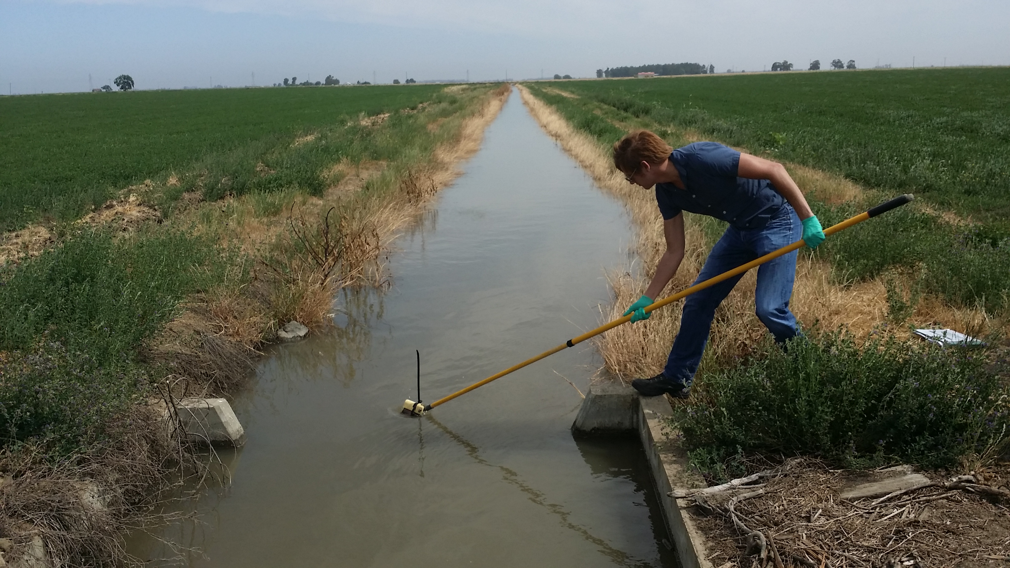 Ag Field Sampling - DB.jpg